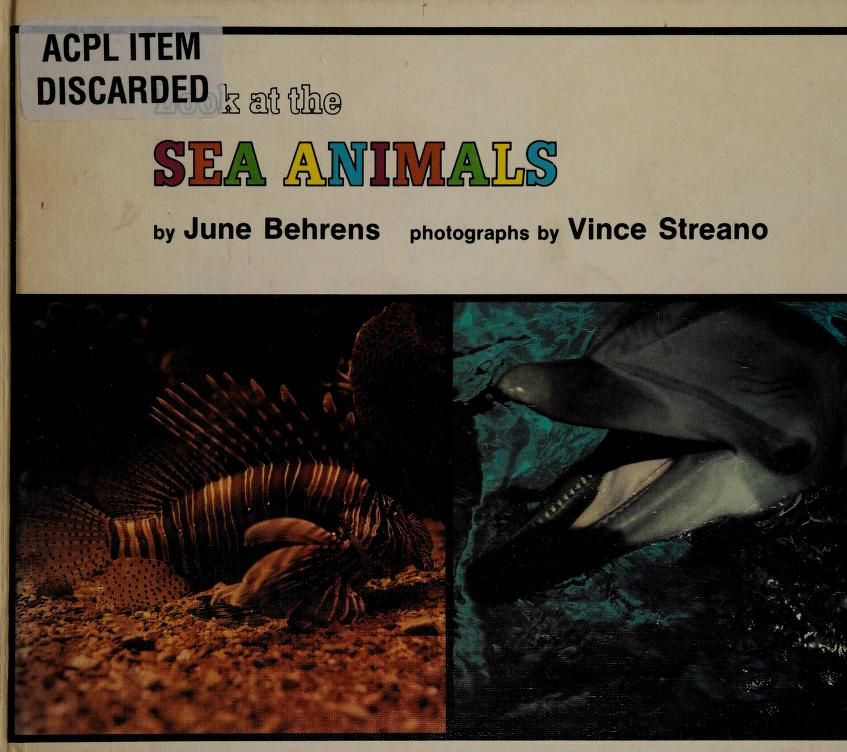 Look at the sea animals by June Behrens